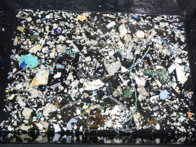 Plastic samples collected during The Ocean Cleanup's Mega Expedition, 2015.