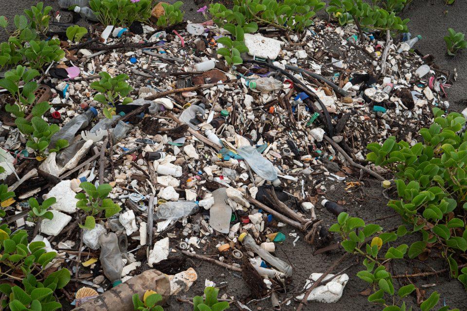 Plastic washed ashore on a Honduran beach