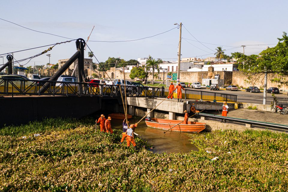 Local task force working on cleaning up water hyacinths in Rio Ozama after the tropical storm